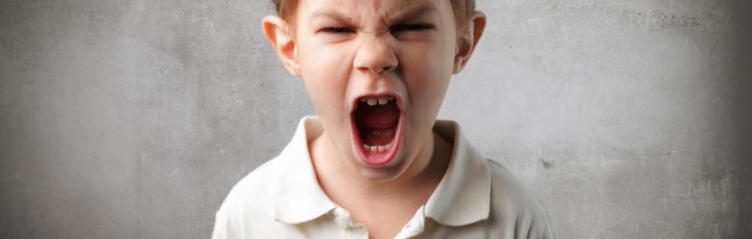 Kenmerkend gedrag hooggevoelig en wilskrachtig kind