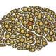 Sensorische informatieverwerking en het verband met Hooggevoeligheid